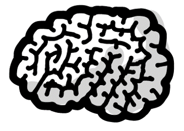 illustration of brains to signify head