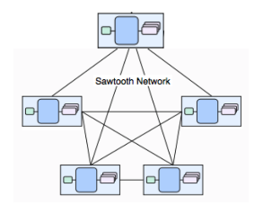 Sawtooth Network