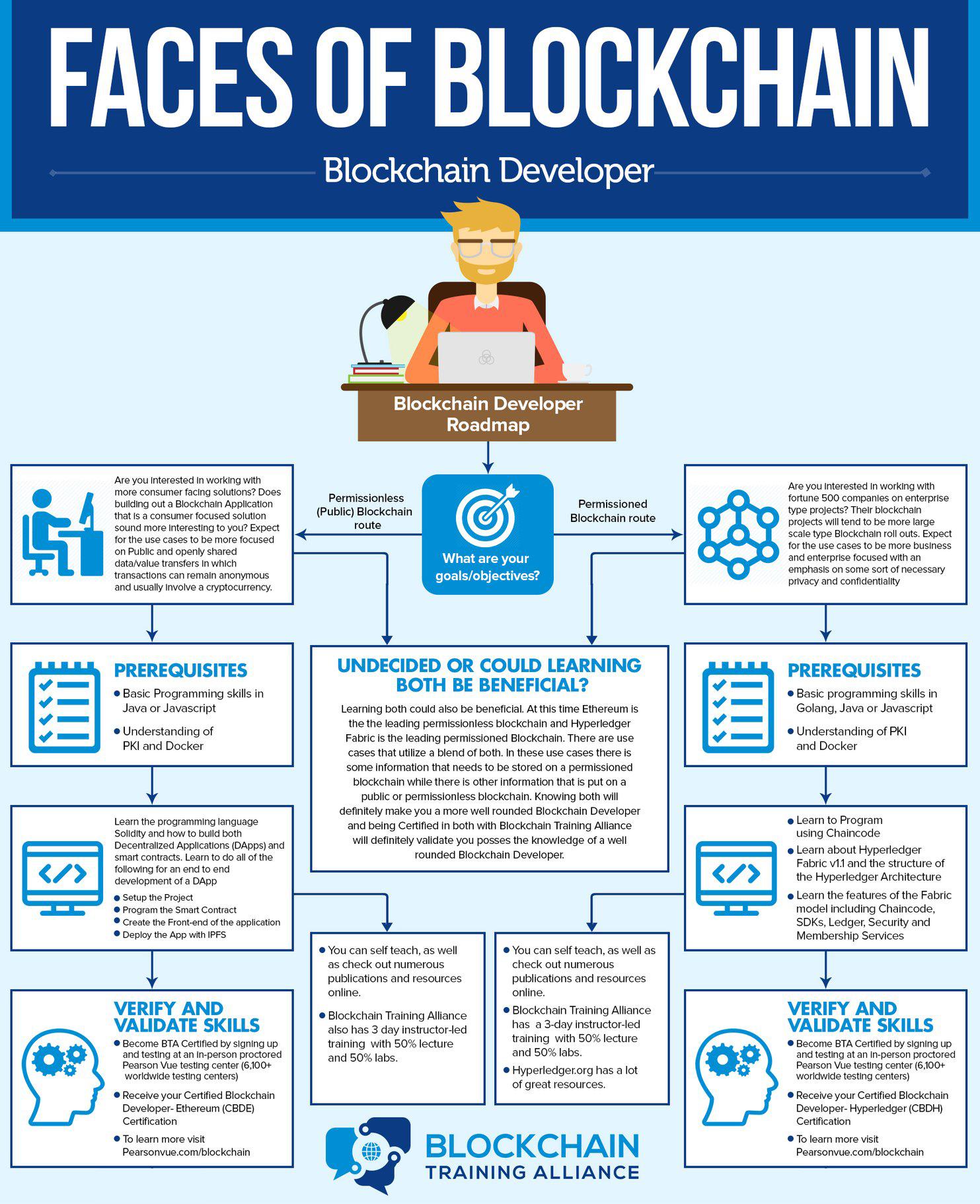 Faces of Blockchain: Developer
